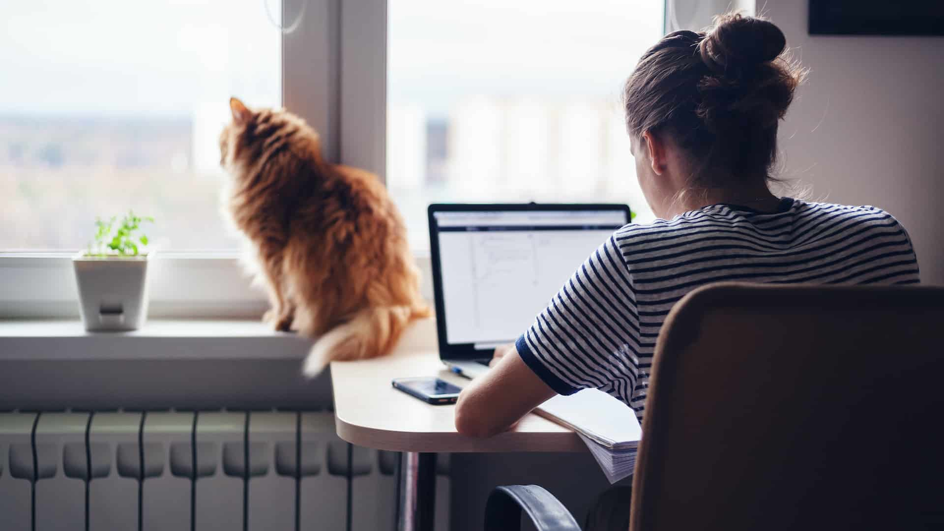 Saving Energy While Working from Home Banner Image
